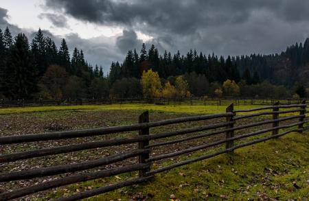 曇りの秋の日に森林の農地の間の木製のフェンス
