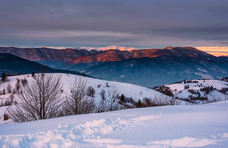 mountain ridge with snowy top at sunrise. gorgeous mountainous countryside landscape in winter