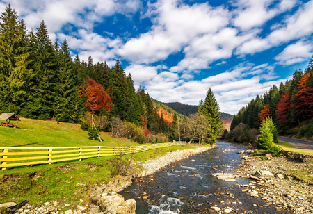 glades: small river in spruce forested mountains with some trees in red foliage. camping place behind the fence on a grassy meadow. gorgeous landscape under vivid cloudy sky on fine autumn day