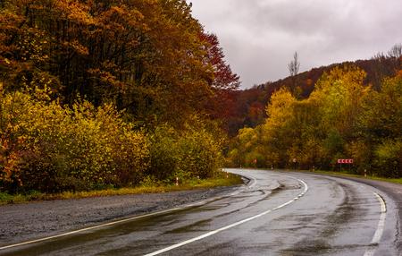 omkering op natte weg door bos in de herfst. gevaarlijk transportlandschap. ellendig regenachtig weer in de bergen. Stockfoto