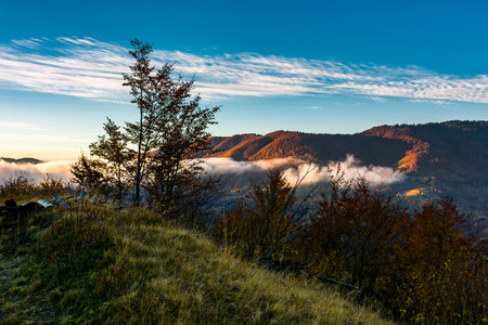 foggy sunrise in mountainous countryside. beautiful autumn scenery with trees, fences and red foliage on a hill in glowing fog under the blue sky Stock Photo