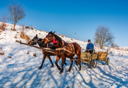 Pilipets, Ukraine - December 21, 2016: traffic in mountainous rural area in winter. sad man riding a cart with two horses on snowy countryside road