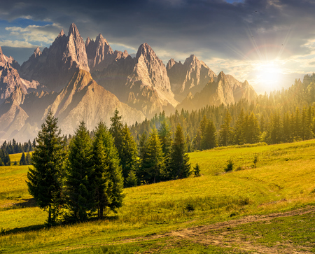 spruce trees on grassy hillside in mountains with rocky peaks at sunset. beautiful composite summer landscape.