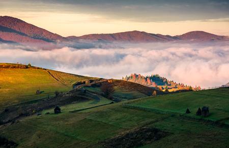 산에서 두꺼운 안개 위에 잔디 언덕. 시골 풍경에서 화려한 일출 스톡 콘텐츠