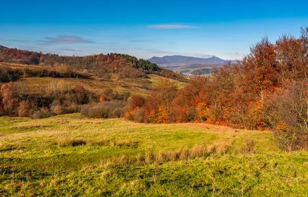 晩秋の中山間地域。緑の草が茂った丘の赤味がかった葉を持つ木です。距離の高峰との山の尾根 写真素材