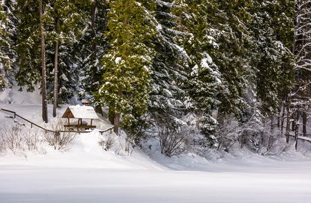 alcove in snowy spruce forest. lovely winter scenery Stock Photo