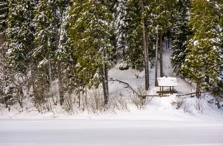 눈 덮인 가문비 나무 숲에 골방. 아름다운 겨울 풍경 스톡 콘텐츠