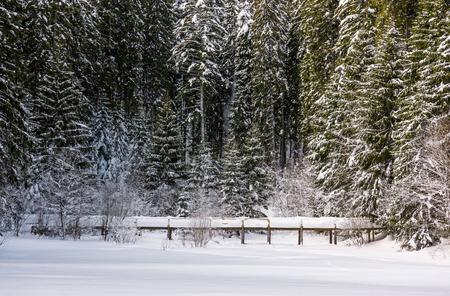 눈 덮인 가문비 나무 숲에서 목조 다리입니다. 아름다운 겨울 풍경