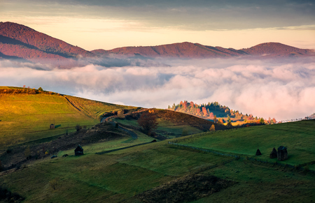 grassy hillside above the thick fog in mountains. gorgeous sunrise in rural landscape Stock Photo