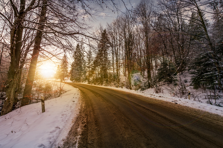 asphalt road through winter forest at sunset. beautiful transportation scenery