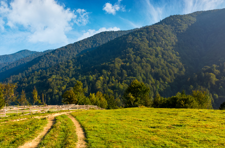 산 초원 길을 따라 울타리. 산속에 아름다운 시골 풍경 스톡 콘텐츠