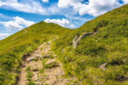 path uphill to the peak of mountain ridge. gorgeous summer nature scenery with cloudy sky. beautiful tourism background Stok Fotoğraf