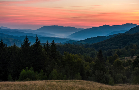gorgeous red dusk in forested mountain landscape. gorgeous Carpathian nature scenery