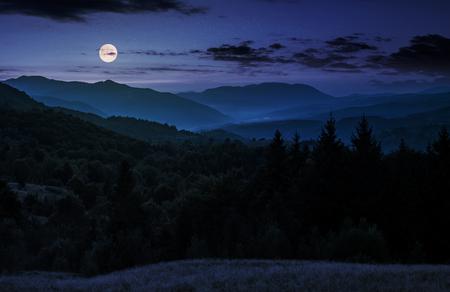 보름달 밤에 숲이 우거진 산 위에 상승. 화려한 카르 파 티아 산 자연 풍경 스톡 콘텐츠