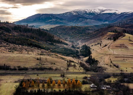 rural valley at the foot of snowy mountain. hills with weathered grass and trees with yellow foliage