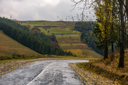 old countryside road on rainy day. gloomy autumn scenery in mountainous area