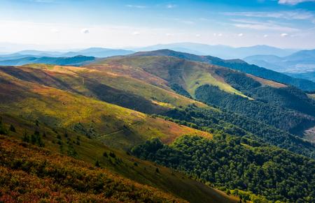 늦은 여름 오후에 산 능선의 언덕을 굴러. 아름 다운 고산 경치의 화려한 잔디 carped. 파란색 거의 cloudless 하늘 아래 거리에서 위대한 산 능선