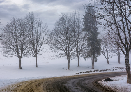 road through the foggy winter forest. naked trees by the road on a snowy hillside Stock Photo