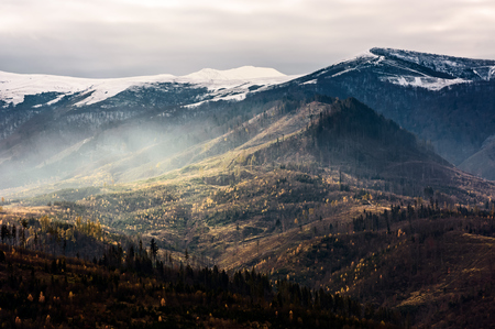 fog over the hillside of mountain with snowy top. stunning landscape in late autumn