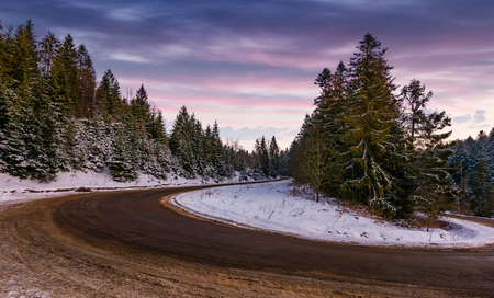 serpentine in spruce forest at dusk. beautiful nature scenery in winter