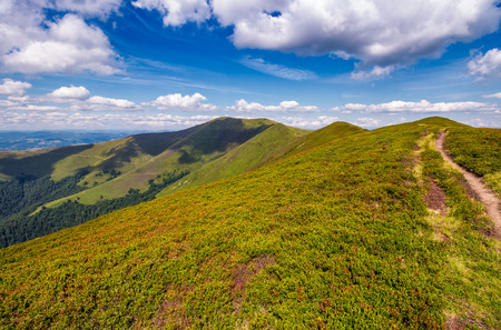 path on top of Carpathian mountain ridge. beautiful summer landscape under gorgeous sky with clouds