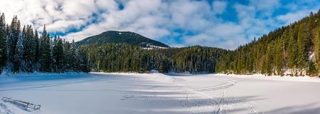 氷のパノラマは、冬の Synevyr 湖をカバーしました。森林のカルパティア山脈の豪華な場所 写真素材