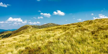 草の山の尾根のパノラマ。青空に雲が立つ晴天の美しい夏の風景
