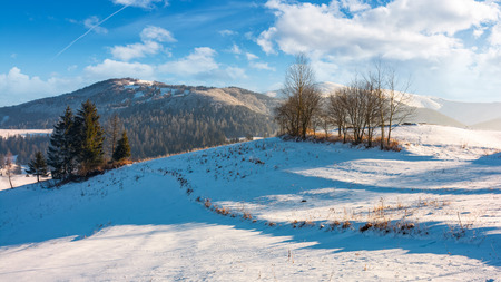 winter time in mountainous rural area. gorgeous countryside with forested hills and snowy meadows at the foot of mighty mountain ridge Stock Photo - 90401428