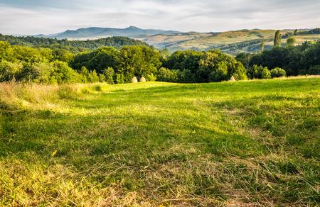 山の草原の草原。干し草は森の近くの草原の端を山積みする。遠くに高いピークを持つ山の尾根。カルパチアの美しい田園地帯
