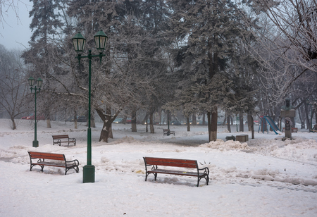 city park with benches and lantern in hoarfrost. wonderful foggy winter morning Stock Photo