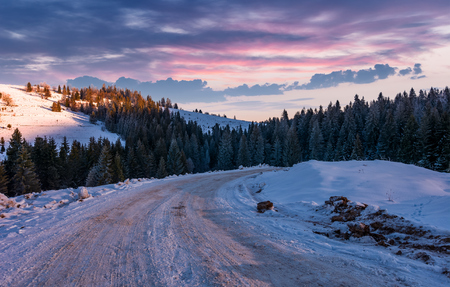 road through snowy hill side in to the spruce forest. gorgeous countryside landscape at winter dawn with magenta sky