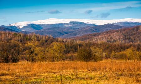 beautiful springtime scenery in Carpathian mountains. snowy top of Polonina Runa mountain ridge in the distance