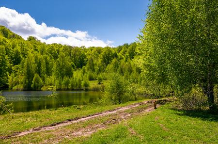 estanque entre el bosque en el día de primavera fina. encantador paisaje de naturaleza en las montañas Foto de archivo