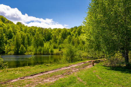 pond among the forest on fine spring day. lovely nature scenery in mountains Stock Photo - 90860862