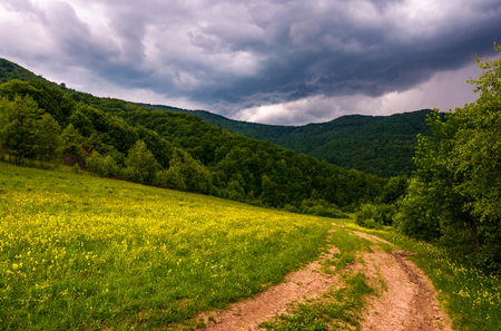 grassy field on hillside in stormy weather. beautiful summer landscape mountains with country road running down the forested hill.