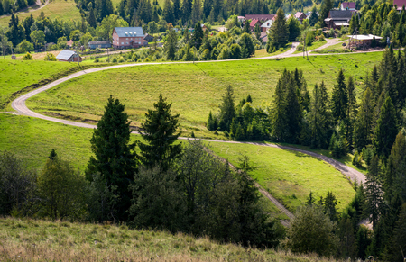 winding road to village through grassy hillside with spruce forest. lovely early autumn countryside landscape Stock Photo