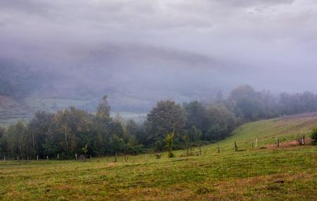 Zona rurale in montagna in una nebbiosa mattina nebbiosa. paesaggio cupo ma stupendo con alberi e campi su dolci colline in autunno Archivio Fotografico - 91212762