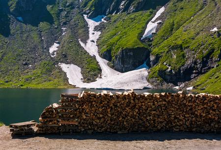 氷河のほとりみじん切り薪。山の美しい夏の風景。いくつかの草と雪のスポット岩山。