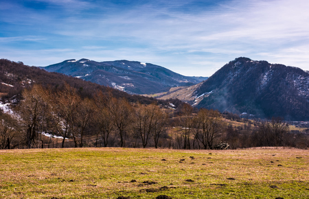 Grassy field on a slope in springtime. lovely countryside landscape in Carpathian mountainous area