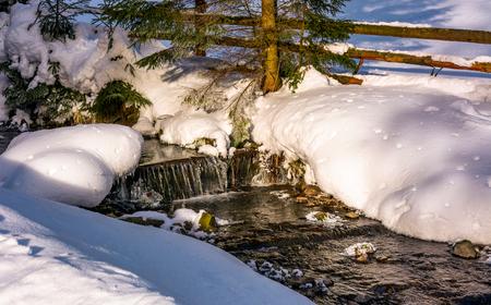 冬の森の滝と小川します。素敵な冬の自然風景 写真素材
