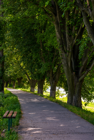 Bench in shade of linden trees. Uzh river embankment in summer Stock Photo