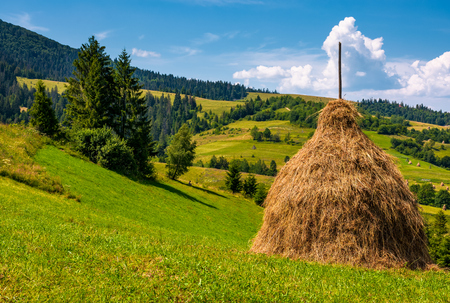 haystack on a grassy hill on a summer day. beautiful scenery in Carpathian