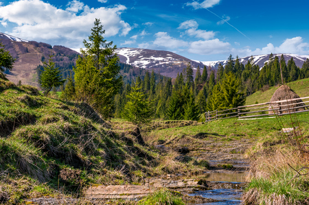 Beautiful mountainous countryside in springtime. trees and wooden fence on hillside near the small brook. spruce forest at the foot of the mountain ridge with snowy tops Stock Photo - 91331627