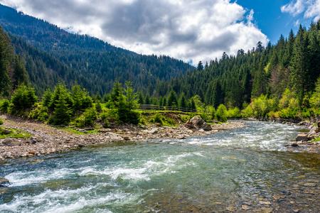 カルパタン山脈のテレブリャ川。シネビル国立公園の農村部の美しい春の風景 写真素材