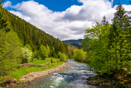Tereblya 川の Carpathan 山。農村部の Synevir 国立公園の美しい春の風景