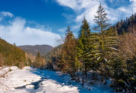 Tereblya 川カルパティア山脈の冬。農村部の Synevir 国立公園の美しい風景