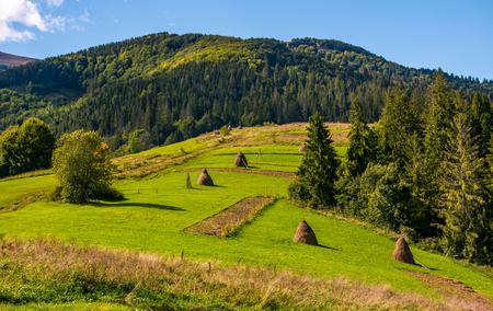 草の上の干し草の山は晴れた夏の日に知っている。遠くに山の尾根を持つ美しい田園風景