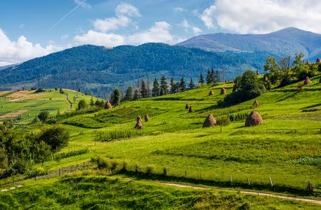 晴れた夏の日に草の干し草の山を知っています。山の尾根の距離で美しい田園風景の景観