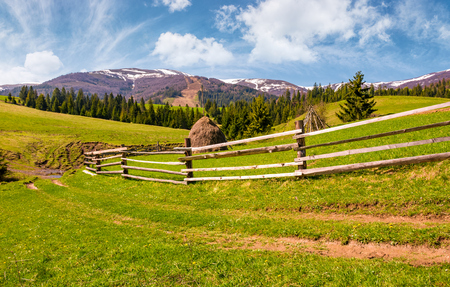 wooden fence along the dirt road on grassy hills of Carpathian alps. gorgeous springtime countryside with spruce forest and mountain ridge with snowy tops in the distance.