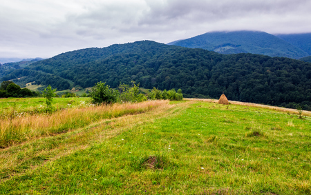 haystack on rural field in mountains. lovely scenery of Carpathian countryside Stock Photo